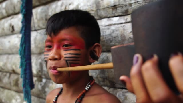 Indigenous Young Guy Smoking Pipes in a Tupi Guarani Tribe, Brazil video