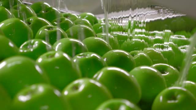 industriellt jordbruk, bearbetning och lagring av äpplen - livsmedelstillverkningsfabrik bildbanksvideor och videomaterial från bakom kulisserna