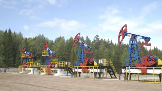industrial oil well pump jacks pumping crude oil for fossil fuel energy with drilling rigs in oil field. nodding donkey pumps working in middle of forest in sunny summer day. oil mining machines. - opec video stock e b–roll