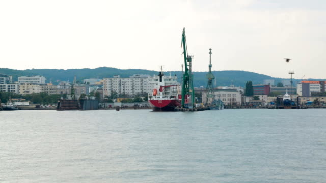 Industrial zone of seaside city with cranes and cargo ships, view from sea video