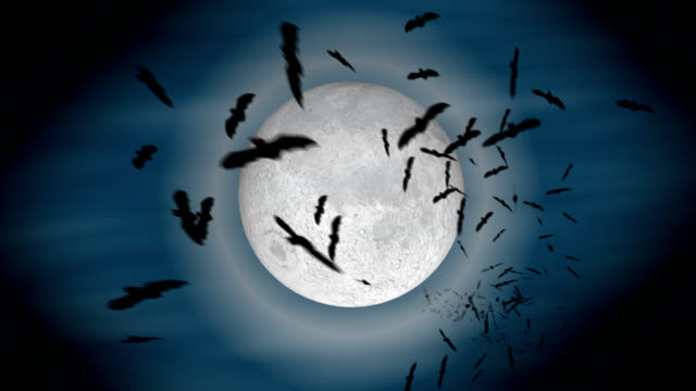 Infinite Bats Infinite bats emerge from the moon till they cover the screen (with alpha channel) vampire stock videos & royalty-free footage