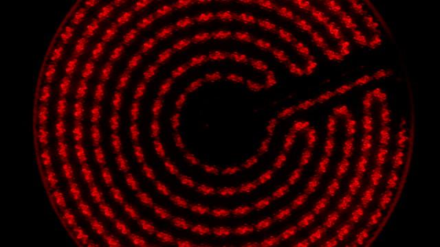 kızılötesi elektrikli soba yanar, maksimum için ve ısınır. zoom. kamera dönme. üstten görünüm. - bunsen beki stok videoları ve detay görüntü çekimi