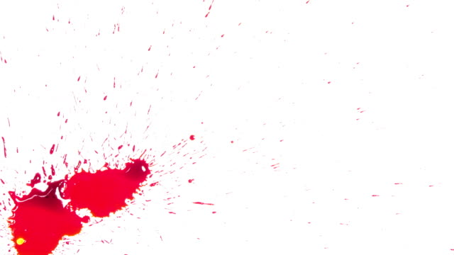 ink blood red color splash drops - ketchup video stock e b–roll