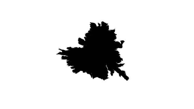 Ink drops on wet paper Black inks drop on wet paper. Black inks and clean white paper. There are no inks on the edge of the paper - all inks are in the  center of the footage. It is easy to use in the video projects. ink stock videos & royalty-free footage