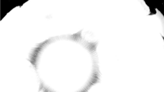 Ink Effect video