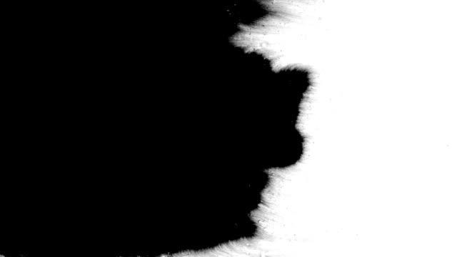 インクフローがフレームを塗りつぶす - インク点の映像素材/bロール