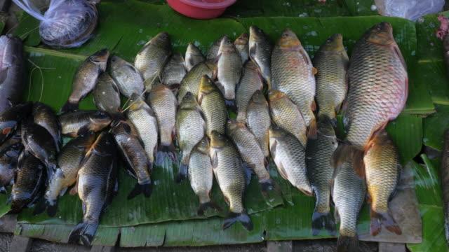 Inle Lake - fish market video
