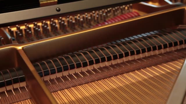 Inside a piano lid with strings and damper