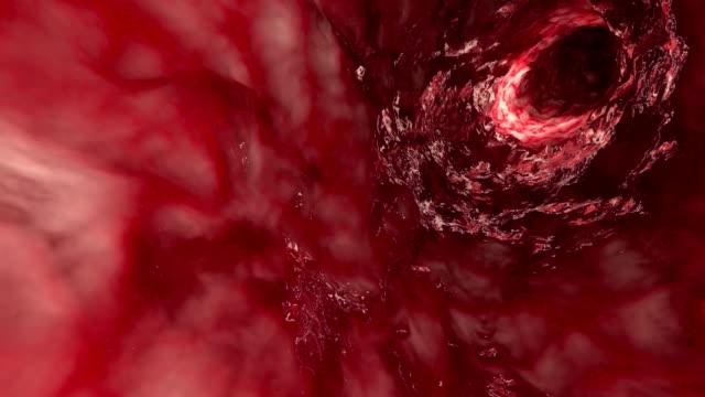vídeos de stock e filmes b-roll de inside artery or intestine - glóbulo vermelho