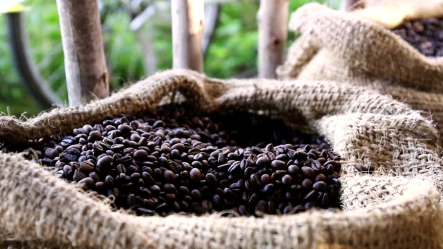 Inside close up of coffee grains in warm light on a jute canvas video