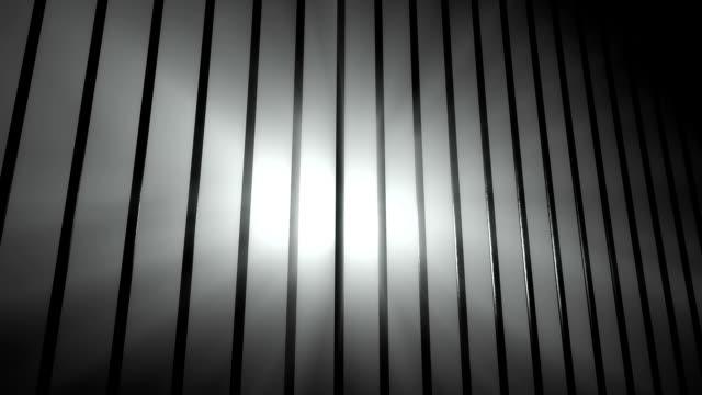 Inside the Prison video