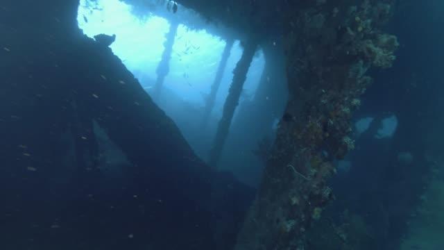 Inside the shipwreck USAT Liberty - Bali, Oceania, Indonesia