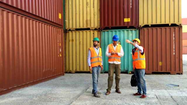 Inspections at commercial transport dock video