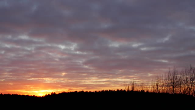 Bидео Intensive, bold colors of sunset over dark forests