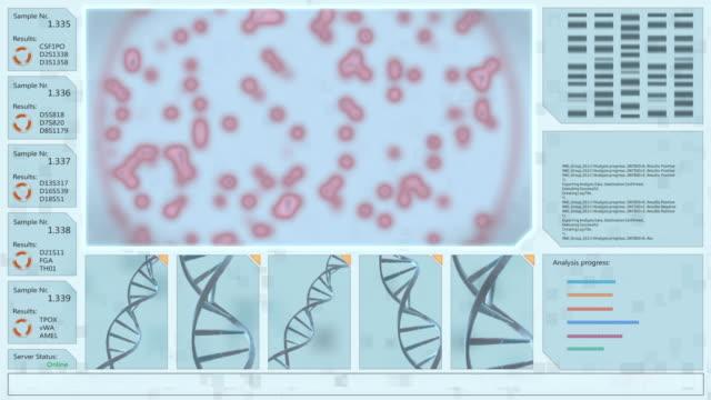 3 d の dna 構造と赤い生物のウイルス パターン複製や顕微鏡下でペトリ皿の成長の対話式インタ フェースです。 - タッチスクリーン点の映像素材/bロール