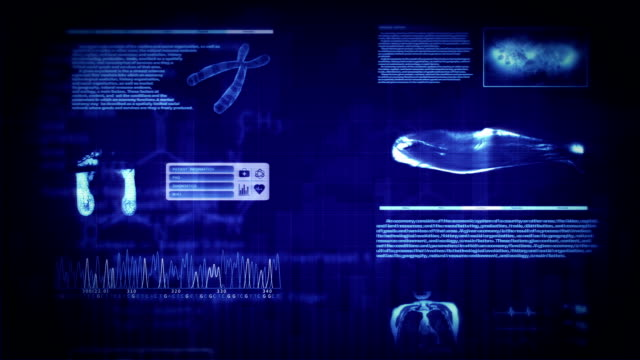 MRI interface. 4 colors in 1. Loopable. Frontal view. video