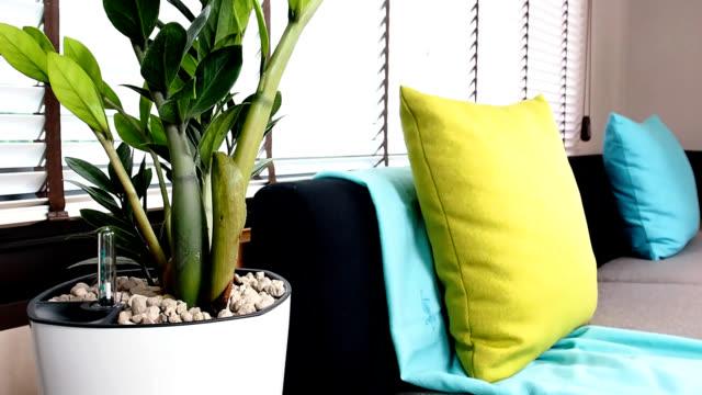 дизайн диване в гостиной - куст стоковые видео и кадры b-roll
