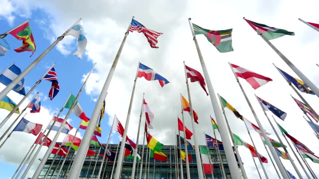 International flags in front of an business building video