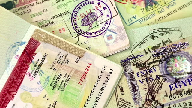 international passports with visas - passports and visas stock videos and b-roll footage