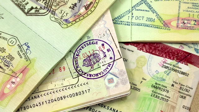 International passports with visas video