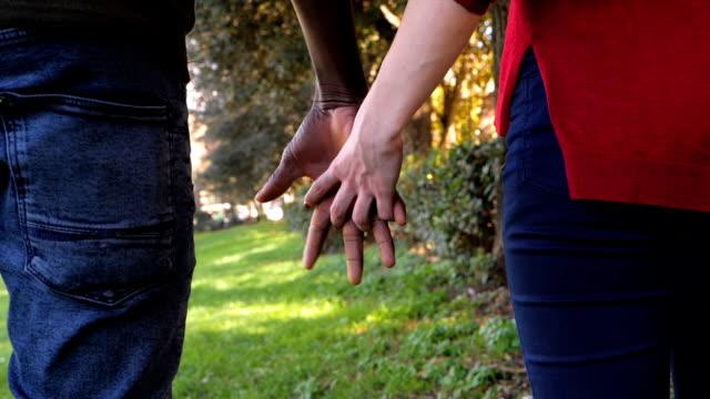 parkta irklararası genç severler holdings eller. karışık etnik köken mix aşk, - i̇nsan sırtı stok videoları ve detay görüntü çekimi