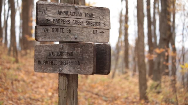 Intersection of Appalachian Trail and Mau Har Trail - Three Ridges Wilderness - George Washington National Forest, VA