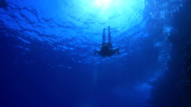 in blu - sky diving video stock e b–roll