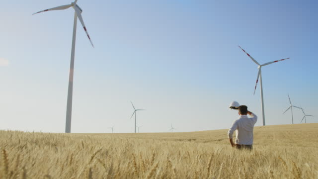 CS Investor in wind turbines standing in the middle of a wheat field video