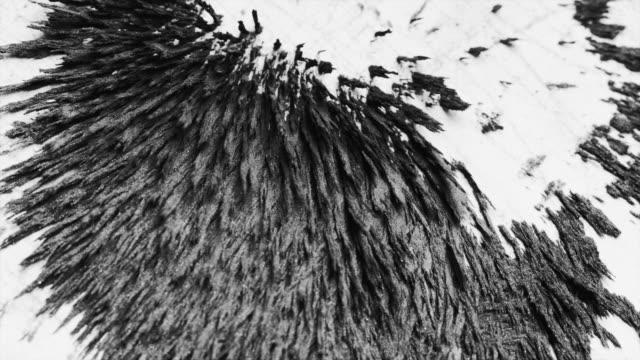 鐵粉塵對磁鐵的反應 - 描述 個影片檔及 b 捲影像