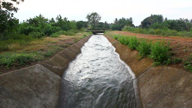 bewässerung canal - bewässerungsanlage stock-videos und b-roll-filmmaterial