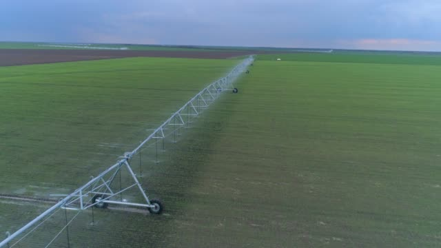 irrigation equipment for green rapeseed watering on agriculture field, drone view on countryside