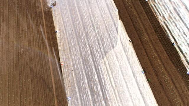 bewässerung von einer teilweise überdachten commercial-gemüsegarten - aerial view soil germany stock-videos und b-roll-filmmaterial