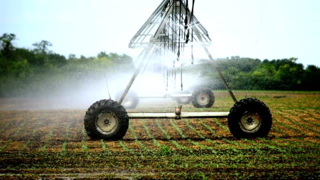 irrigation sprinklers over cultivated land. - värmepump bildbanksvideor och videomaterial från bakom kulisserna