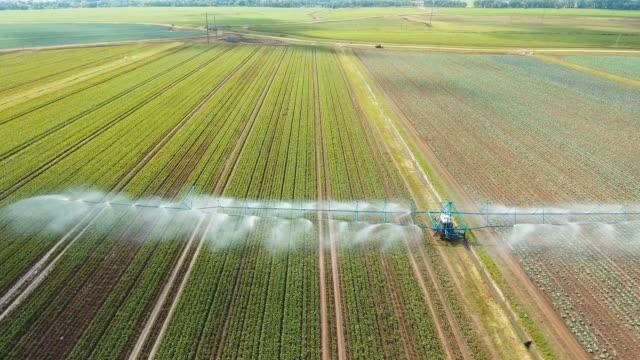 vidéos et rushes de système d'irrigation sur les terres agricoles - arroser