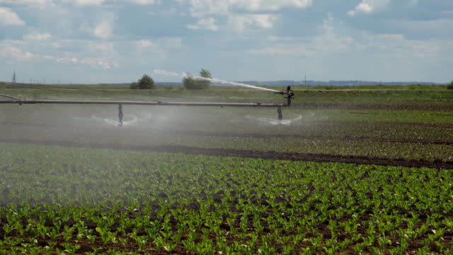 Irrigation system on agricultural land video