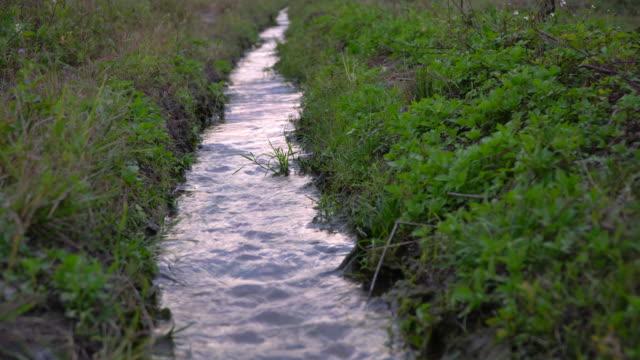 bewässerung - bewässerungsanlage stock-videos und b-roll-filmmaterial