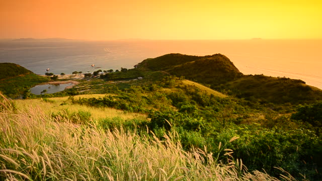 Island at sunset time video