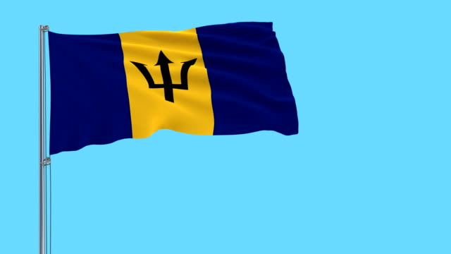 Isolate flag of Barbados on a flagpole fluttering in the wind on a blue background, 3d rendering video