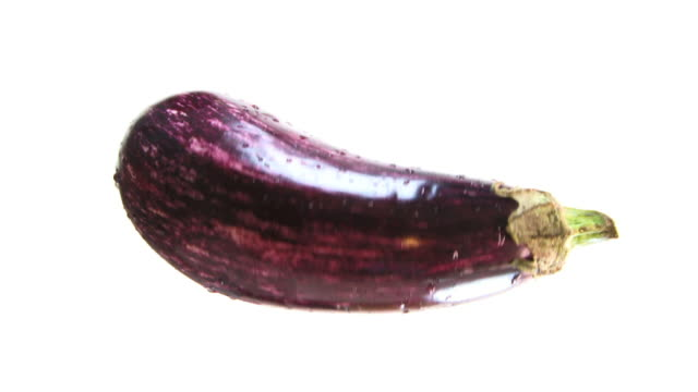 Isolated Eggplant HD video