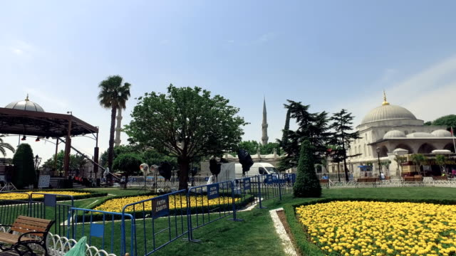 Istanbul, beautiful Blue Mosque also named Sultanahmed with garden full of colorful flowers