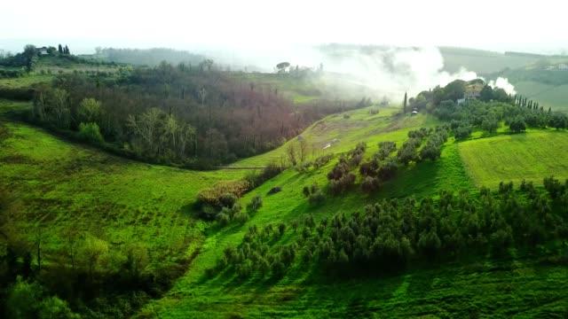 italian countryside with vineyard