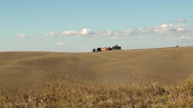 Italian field video