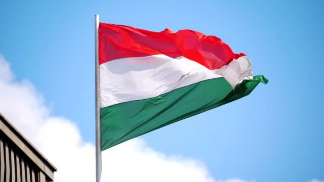 義大利旗子在慢動作180fps - sicily 個影片檔及 b 捲影像