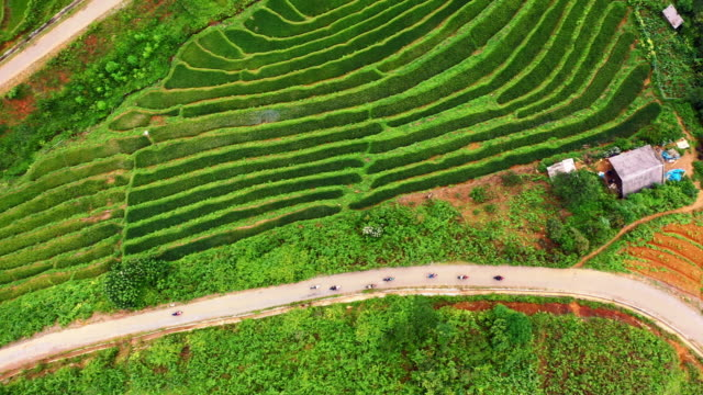 It's how the locals get around 4k drone footage of motorbikes riding through the beautiful rice fields of Sapa in Vietnam sa pa stock videos & royalty-free footage