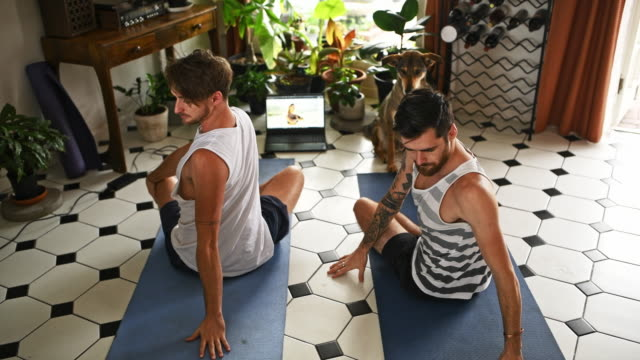 It's like having a yogi in your home 4k video footage of two men using a laptop during a yoga routine at home while their dog watches twisted stock videos & royalty-free footage
