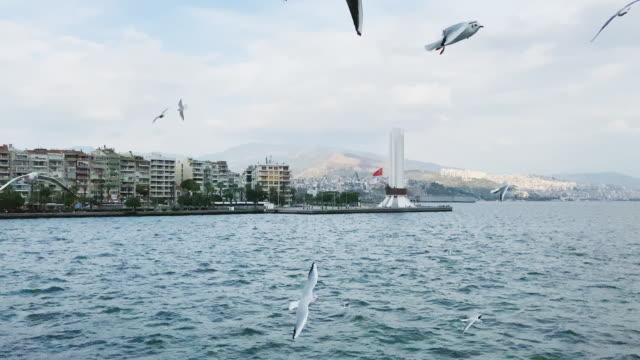 Izmir City View from Ferry with Seagulls Izmir City View from Ferry with Seagulls izmir stock videos & royalty-free footage