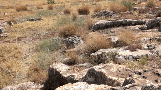 Jagged Barren Lanscape in Israel video