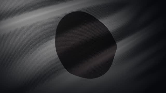 4k 日本旗は、非常に詳細な生地の質感で風に手を振ります - 日本文化点の映像素材/bロール
