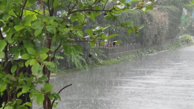 vídeos de stock e filmes b-roll de japan. july. heavy rain. - passagem de ano