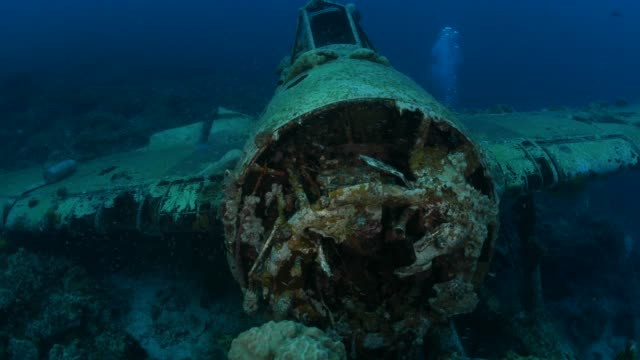 japanese aichi e13a navy seaplane undersea, palau - кораблекрушение стоковые видео и кадры b-roll